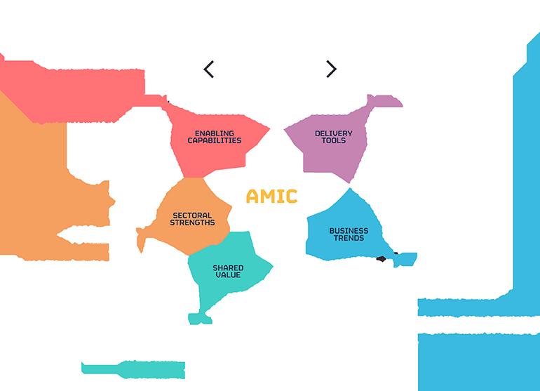 AMIC Project Diagram